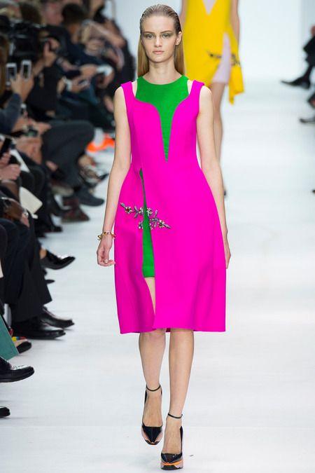 Raf Simons for Dior - 2014