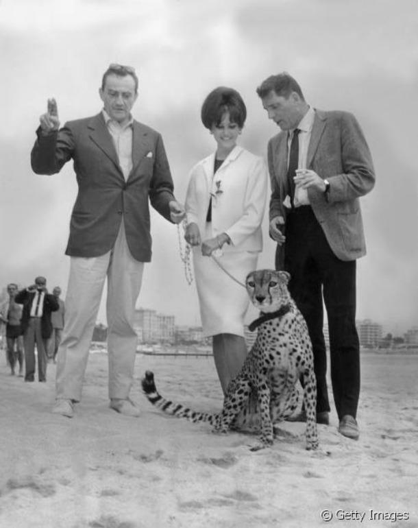 4. Claudia-Cardinale-Cannes 1963 il gattopardo