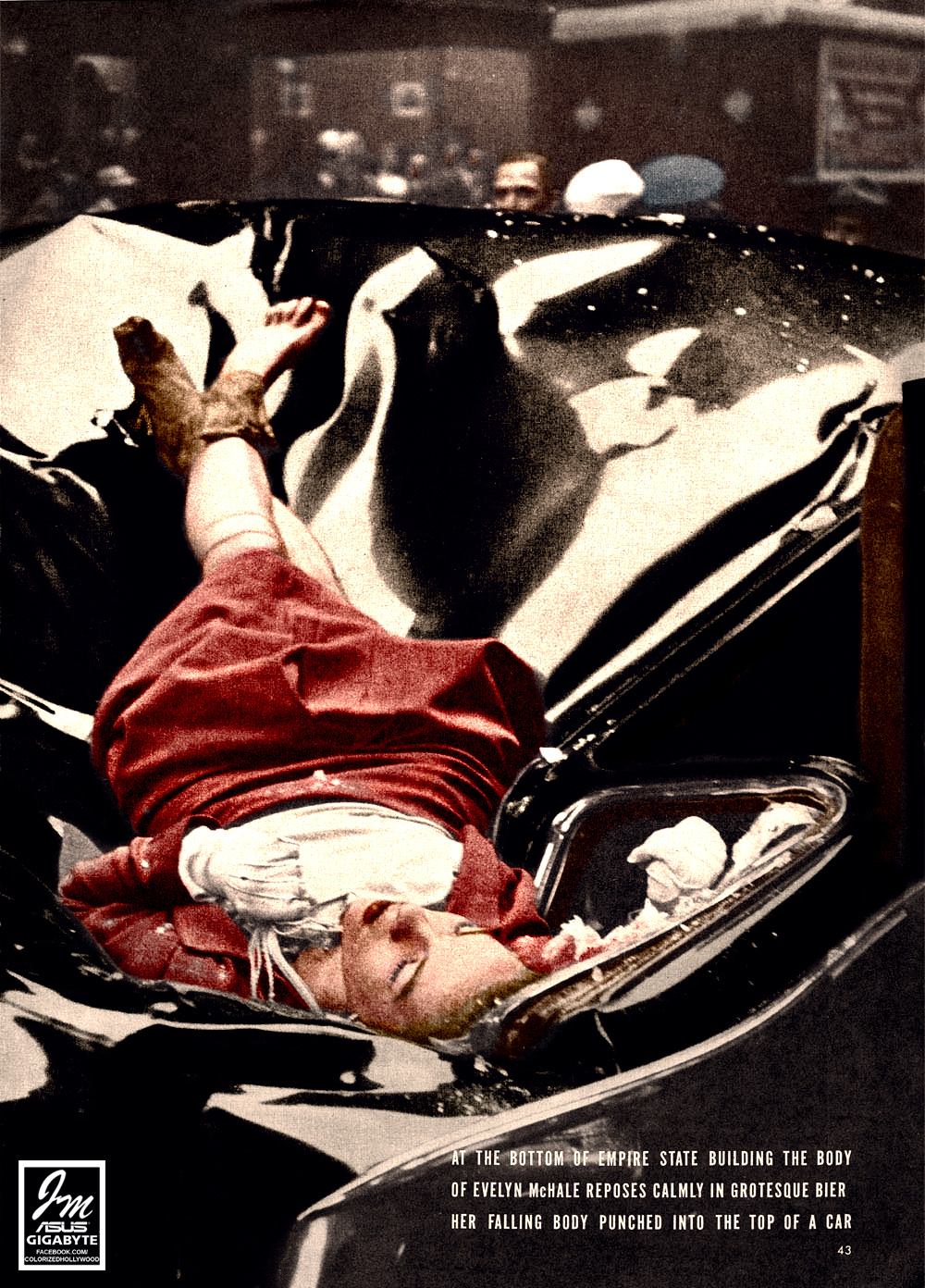 Evelyn McHale death the most beautiful suicide